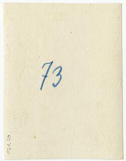 GDIp04086; Fotografie; [wohl bei Jericho], in Bestand von rund 5.000 nach Themen und Orten sortierten Kleinbildabzügen