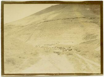 Fotografie im w. ennar [wadi en-nar]