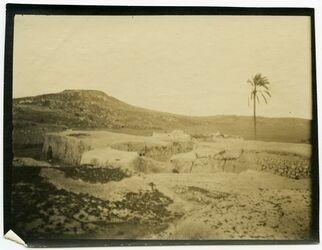 GDIp04201; tell zakaria [tell zakariia]; [Palästina], in Bestand von rund 5.000 nach Themen und Orten sortierten Kleinbildabzügen