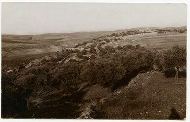 Postkarte [wohl Bethlehem]