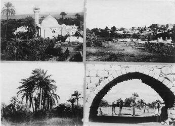 Fotografie Dschenin [wohl Jenin] Moschee, Palmen, vom Wasser.leitung