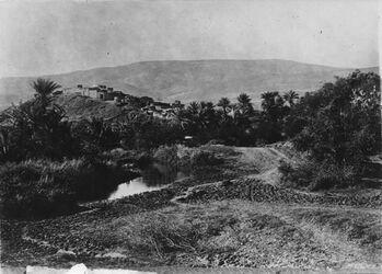 Fotografie el-abedije [El-abedije] v. O. Wasserseite im Hintergrund der Berg im Westen des Jordantals [am Jordan]