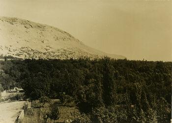 Fotografie Original Damaskus Es-salihije [es-Salihije] bei Damaskus v. SW