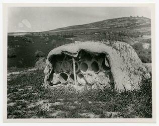 Fotografie [Bienenhaus auf Hausdach bei Safed]