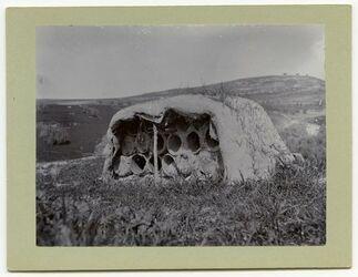 Fotografie Bienenhaus b. Safed