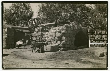 Fotografie Arabischer Brunnen. Kalkilie
