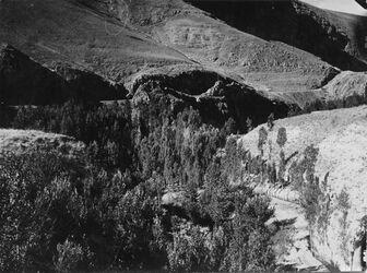 Fotografie Antilibanon Original Baradatal [wohl Wadi el barada (Anti-Libanon)] [bei Damaskus]