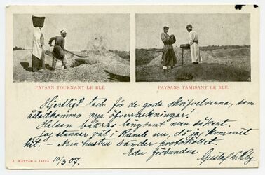 Fotografie Paysan tournat le blé. Paysan tamisant le blé. [Getreideverarbeitung, Postkarte an G. Dalman]