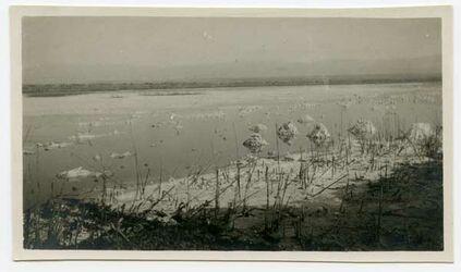 Fotografie östliche Lagune [wohl Totes Meer]