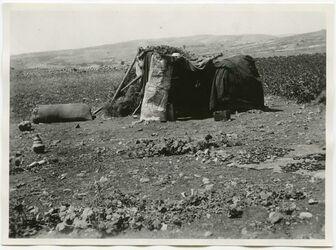 Fotografie Wächterhütte im Rusa-Felde [usw., im Hintergrund das Dorf serafat]