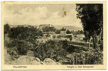 Fotografie Tabgha a. See Genezareth [Postkarte an Gustaf Dalman]