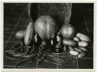 Fotografie Gemüse vom Markt [Jerusalem]
