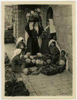 Fotografie Jerus. [Jerusalem]
