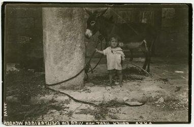 Fotografie Akka [Akko, Kinder]. Früh übt sich wer ein Eseltreiber werden will.