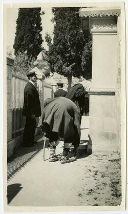 Fotografie Gethsemane [Juden, Jerusalem]