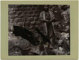 Fotografie Hühnerfütter [Rattas] in Balat [Kinder, Postkarte an Gustaf Dalman]