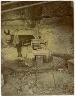 Fotografie Bethlehem, Maultiermühle [Mühle, leichte Retusche]
