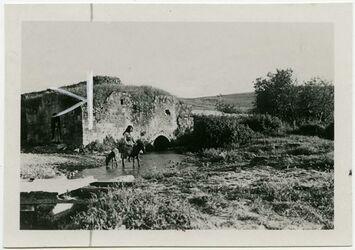 Fotografie [Wassermühle am wadi el-Ieggun, Mühle]