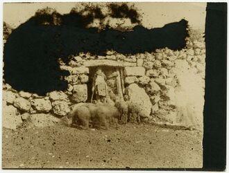 Fotografie Schafstall Balat [Herde]
