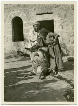 Fotografie Gruss nach dem Opfer [Islam]