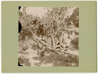 Fotografie Pflug, Joch, Sieb, Mörser, Gärten von Aleppo [Pflügen]