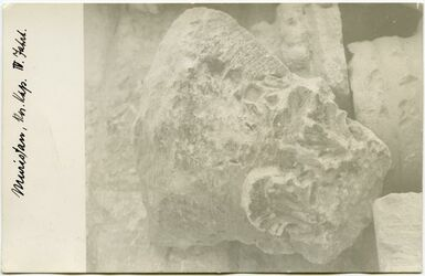 Fotografie Muristan [Jerusalem], Kor. Kap., IV. Jhrt.