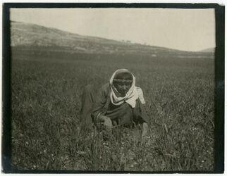 GDIp02784; Fotografie; In der Ebene von huwara, in Bestand von rund 5.000 nach Themen und Orten sortierten Kleinbildabzügen