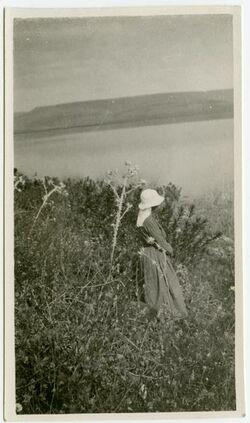 Fotografie [Pflanzenfoto, Kafarnaum]