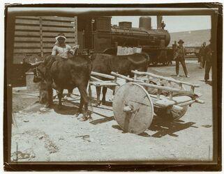 Fotografie [Tscherkessenwagen, Bahnhof, Amman]