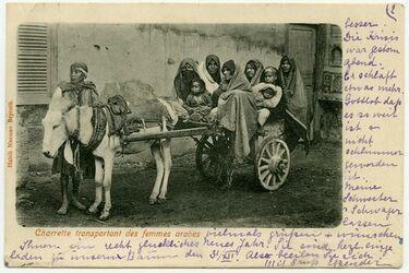 Fotografie Charette transportant des femmes arabes. [Postkarte]