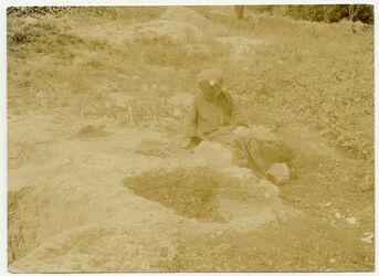 Fotografie Weinkelter bei es-sarafab