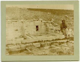 Fotografie Winspress in Northern Galilee […, Kelter, Weinberg]