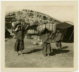 Fotografie el kerak [Al-Karak]