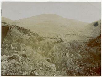Fotografie Westhügel von […?] und Tal des Jabbok von Westen