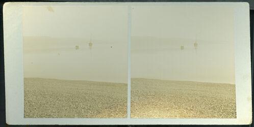 Stereofotografie Totes Meer mit Morri [Möwe?]