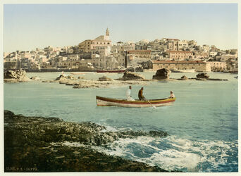 Photochrom Jaffa.