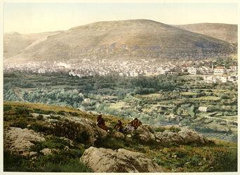 Photochrom Naplouse et le Mont Garizim. [Nablus und Garizim]