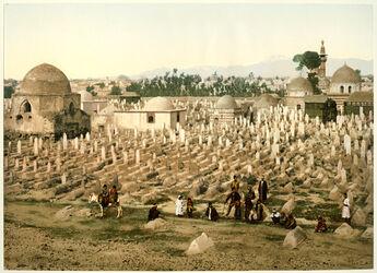 Photochrom Damas. Cimetière du Meidan. [Damaskus, historischer Friedhof [Bab-al-Saghir?]]
