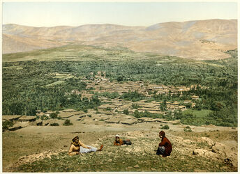 Photochrom Anti - Liban. Zebdani. [Anti-Libanon, Wadi el barada]