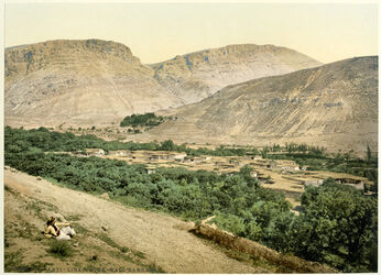 Photochrom Anti - Liban. Souk - Wadi-Barrada. [Anti-Libanon, Wadi el barada]