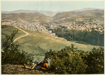 Photochrom Anti - Liban. Zahleh. [Anti-Libanon, Zahlé]