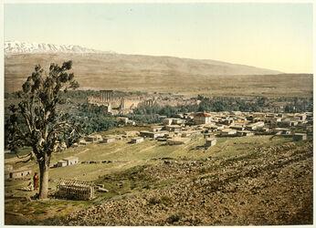 Photochrom Balbek et le Liban. [Balbek, Libanon-Gebirge]