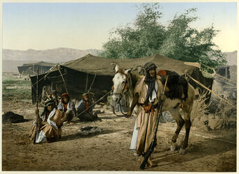 Photochrom Bédouins nomades devant leur Tente. [Beduinen-Nomaden vor ihrem Zelt]