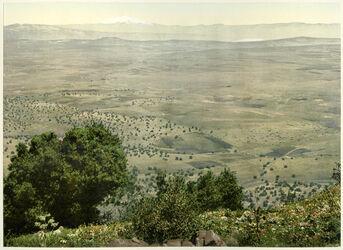 Photochrom Vue depuis le Tabor sur la Plaine Saron - Galilée et le Mont Hermon [Tabor, Ebene Sarona, Galiläa, Hermon]