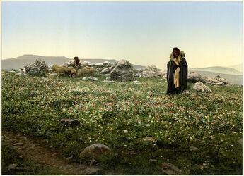 Photochrom Hadjar En - Nasaroh. L