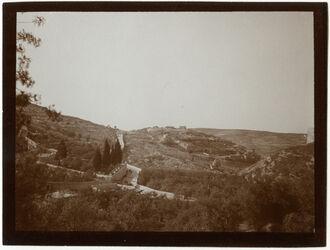 Fotografie Gethsemane u Berg des Ärgernisses v. N [Jerusalem]