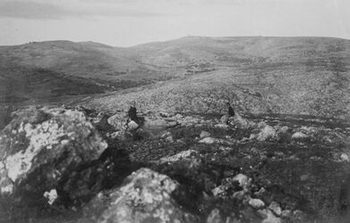 GDIs01097; Fotoalbum; Blick auf en-nebi samwil. Aus der Gegend der Richtergräber. [Jerusalem, Umgebung], Album Gustaf Dalman, 1903-05, Blatt 4 Vorderseite (GDIs01096), oben links