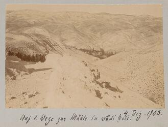Fotoalbum Auf d. Wege zur Mühle in wadi kelt. 4. Dez. 1903.