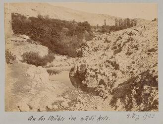 Fotoalbum An der Mühle im wadi kelt. 4. Dez. 1903.