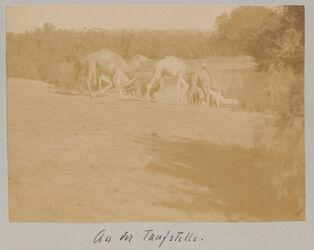 Fotoalbum An der Taufstelle.